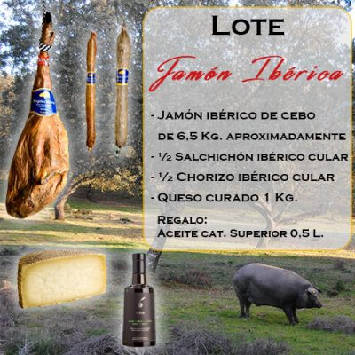 lote4